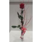 1 Rosa Estabilizada en jarrón