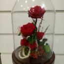Cúpula con rosas eternas